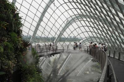 シンガポールへ行ってみたv(^_^)v 3日目③ ガーデン・バイ・ザ・ベイ クラウドフォレスト