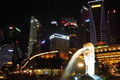 シンガポールへ行ってみたv(^_^)v 3日目④ 待ちぶらり&ナイトサファリ&夜のマーライオン