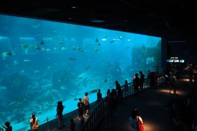 シンガポールへ行ってみたv(^_^)v 4日目① 待ちぶらり&セントーサ島水族館