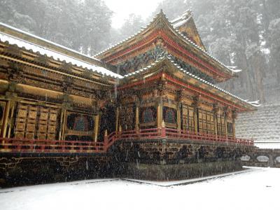 日光の社寺 初詣
