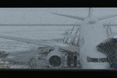 アーァ!すれ違いの香港・・大雪だもん仕方ないけどね~