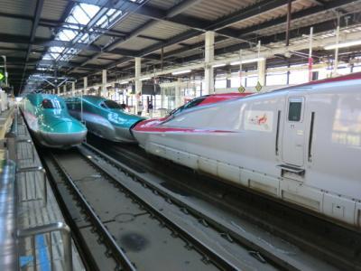 みちのく帰省&雪見旅・その1 あぁ上野駅‥東北新幹線でみちのくへ。