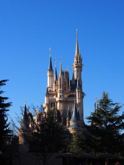 冬の東京ディズニーリゾートを満喫♪2泊3日の旅 ~ディズニーランドホテル泊~(1日目)