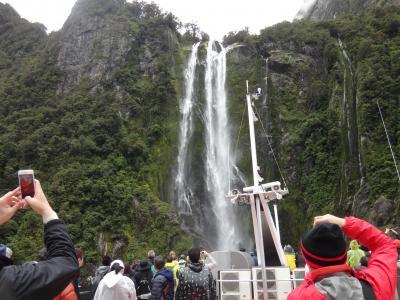 初夏の花々がお出迎え~2017年始初のニュージーランド旅⑤