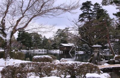 白川郷のライトアップと兼六園・五箇山をめぐるツアーに参加してみました (2)雪化粧の兼六園