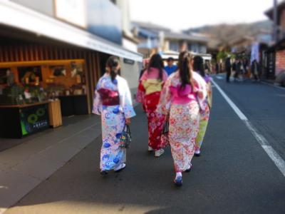 2017 優待バスツアーで行く!一足先に春を感じる京都