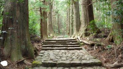 201011南紀・白浜旅行 初日~2日目【那智山】
