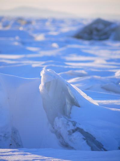 初★海外家族旅行 激近ヨーロッパ・極東ロシアへ ②2日目・・・冬のハバロフスク散策♪