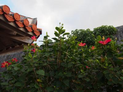 突然の沖縄旅1