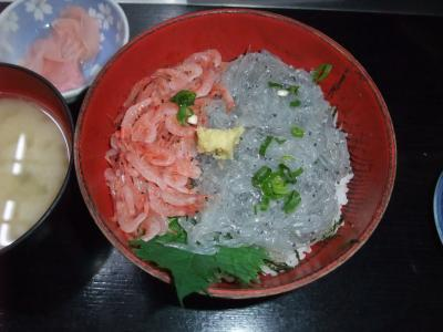 東海道沿線 小田原城と沼津海鮮丼 そして熱海で温泉