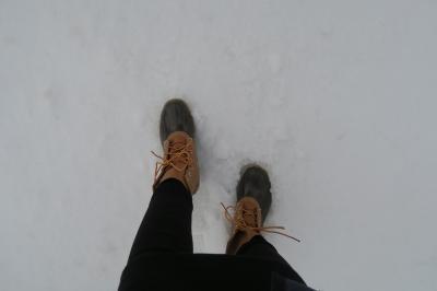 2017. ワシントン 雪の日