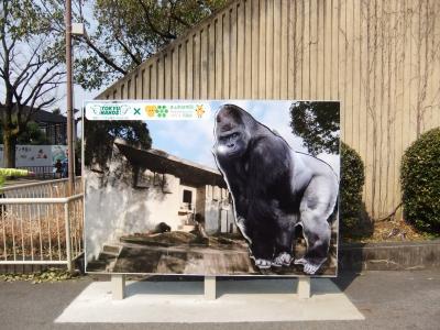 名古屋東山動物園へ