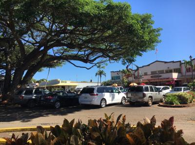 ハワイ旅行4
