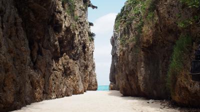 毎年恒例!沖縄(4泊5日)3日目 フグキ並木、備瀬のワルミ、瀬底ビーチで本部をのんびり満喫~♪