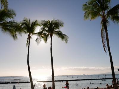 2泊4日でハワイにひとり旅(2日目~帰国)