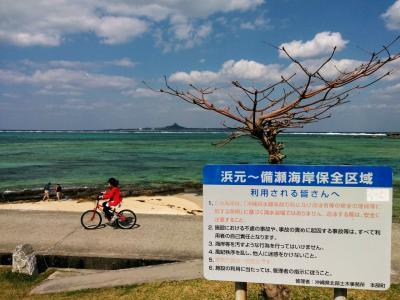 ひろ🐵たま🐗の春の沖縄ちょろちょろしよるんよ~ もう一回、本部半島まわってみるかな~編