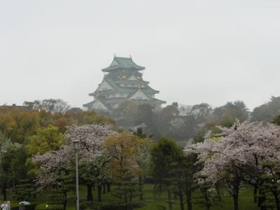 雨の中の大阪城の桜と幻想的な絶景の東寺ライトアップ♪(その1)