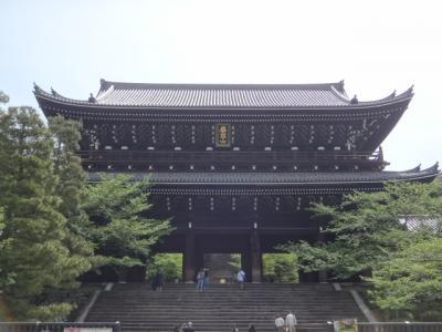 仔猫といっしょ計画(京都総決算2016 高台寺他)