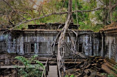 カンボジア 例えるならラピュタのアトラクション ベンメリア遺跡に行ってみた オッサンネコの一人旅