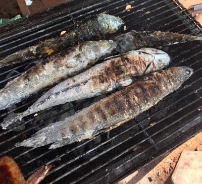 カンボジア料理のおすすめ 焼き魚とマンゴーサラダ