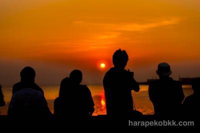 【バンコクから日帰り旅行】夕陽とかもめの楽園 バンプー・リゾート(無料)