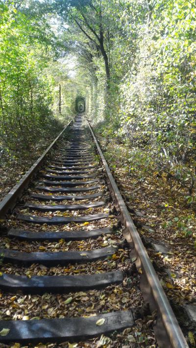 ウクライナ 古都リヴォヴと愛のトンネル