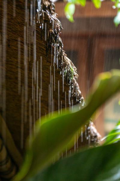 2017 フォーシーズンズ・サヤンに泊まるほぼ雨季のバリ_3