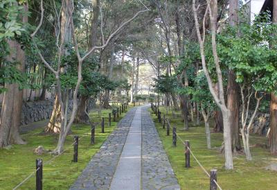 シニア夫婦の京都ぶらり旅 4日目(2017/3/27)