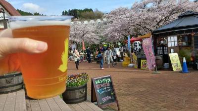 2016年4月の御殿場 花より御殿場高原ビール!飲み放題の夕食リベンジの宿、翌日は山梨県の「忍野八海」まで足を延ばし、富士霊園の桜並木も見てきました