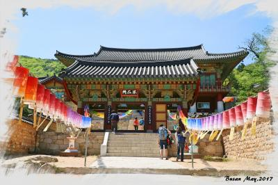 【韓国(釜山)】緑豊かな景観が見事!釜山のパワースポット「梵魚寺(ポモサ)」