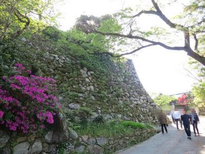 【日本100名城に行こう】新緑の松阪城と満腹牛銀ランチ