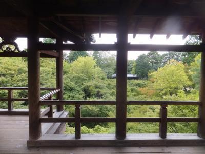 2016 秋の関西遠征は初吹田スタジアムへ【その1】まずは京都へ東福寺散策