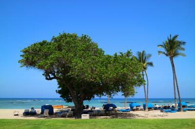 ハワイ島で過ごす癒しのGW♪パワースポット&美味しいもの巡りで、心もお腹も満たされて☆おされカフェ&コーヒー農園めぐり&マウナラニのパワースポット☆vol.4