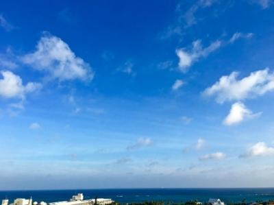 沖縄本島ドライブ紀行。(その1──美ら海水族館・本島中部)