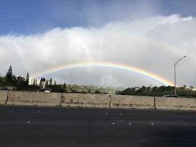 28回目 ハワイ JAL オアフ島&ハワイ島
