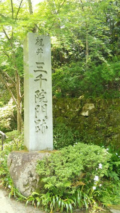 姫路城と明石海峡大橋と京都大原で御朱印 一泊二日の旅 二日目