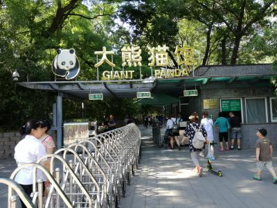 北京(日本国大使館と北京動物園のパンダ)