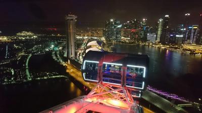 シンガポール旅行1 チャイナタウン、チョンバル、シンガポールフライヤー