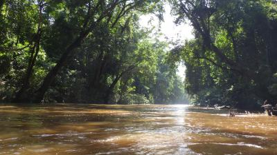 自然満喫のマレーシア     1. クアラルンプールからタマンネガラへ