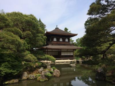 京都東山に寄り道しながら京洛八社を巡る♪