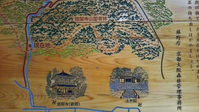 「大文字山」トレイル。