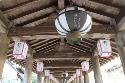 2016年 和歌山・奈良 年末旅行 ~奈良~