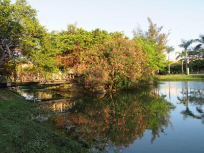 台湾 「行った所・見た所」 高雄の中央公園から愛河へ