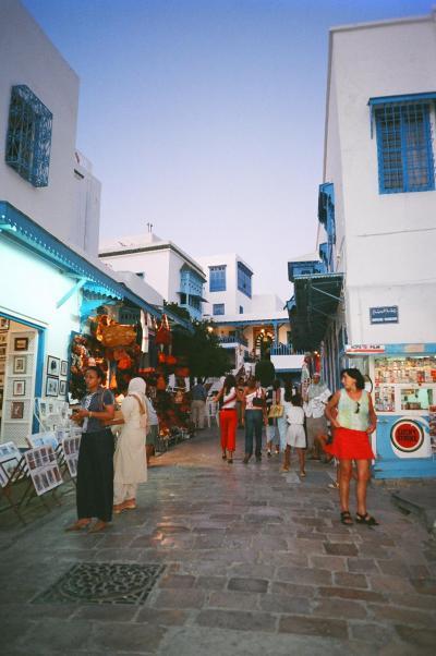 2003年8月、駆け足で地中海を縦断、チュニジア、マルタ、シチリアへ①(チュニス、カルタゴ)
