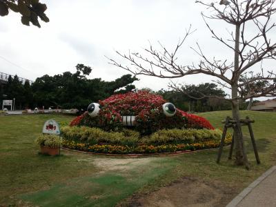 2016年1月 沖縄旅行 2日目