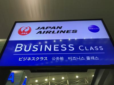 初めてのハノイ JAL 787-8(SS8) ビジネスクラスで帰国