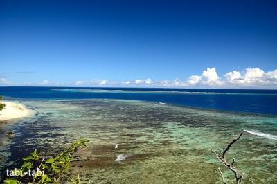 フィジー・マタマノア島 の 鳥  と さかなたち