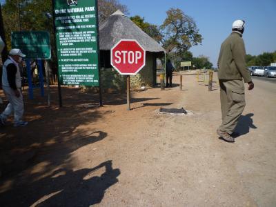 アフリカ大陸チョべ国立公園