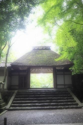 京都*銀閣寺~法然院