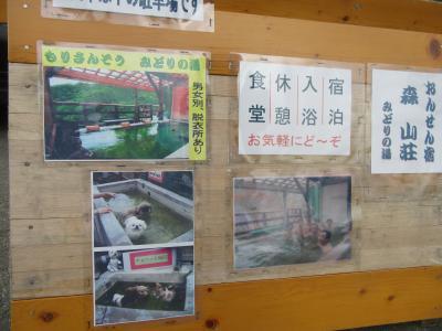 北関東・東北自動車道往還(岩手県)